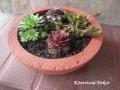 kövirózsák piros betonfestékkel festett könnyűbeton növénytartóban