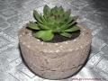 Kövirózsa köszönetajándék könnyűbeton edényben, 11 cm széles, 5,5 cm magas, alja zárt, szürke és piros, Kód: KA 04, 700 Ft/db