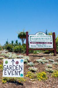 Succulent-Celebration-Waterwise-Botanicals-2014