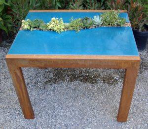 kék beton asztal pozsgásokkal