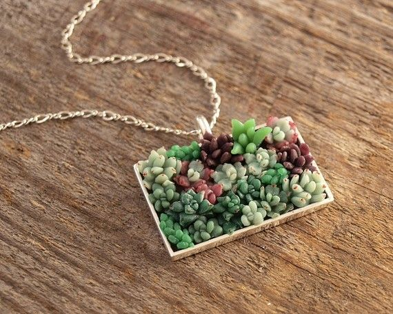 pozsgás nyaklánc, living succulent necklace