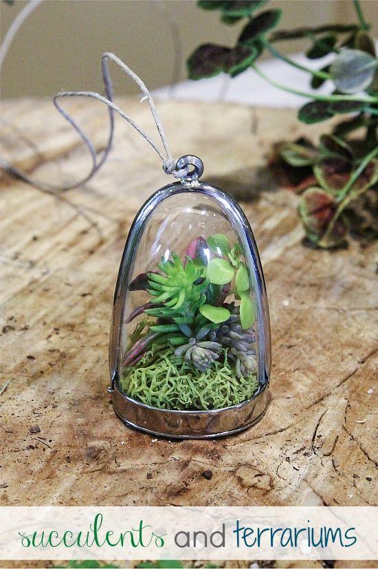 pozsgás nyaklánc, succulent necklace and terrarium