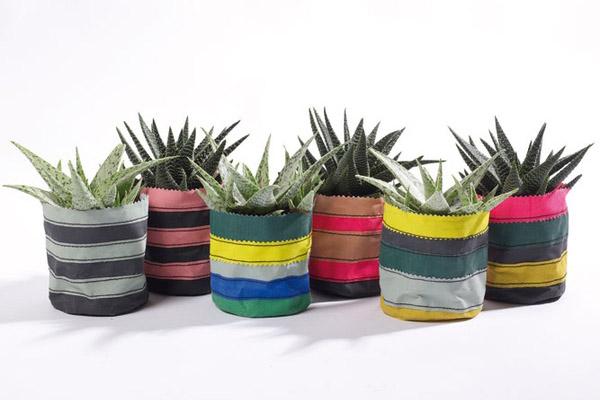 textil növénytartók