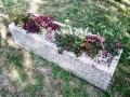virágláda kövirózsával, varjúhájjal