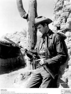 western, saguaro