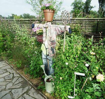 tullni kertek, Garden Tulln