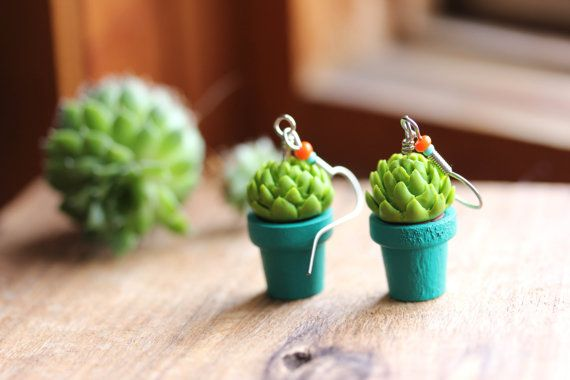 pozsgás fülbevaló, succulent earrings
