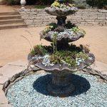 pozsgás szökőkút, succulent fountain