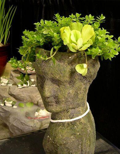 fej alakú növénytartó, head planter