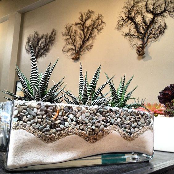 pozsgás terrarium, succulent terrarium