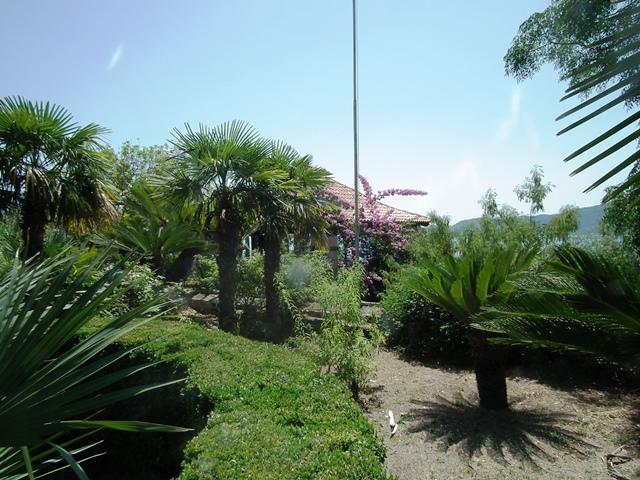 Trstenoi Arborétum